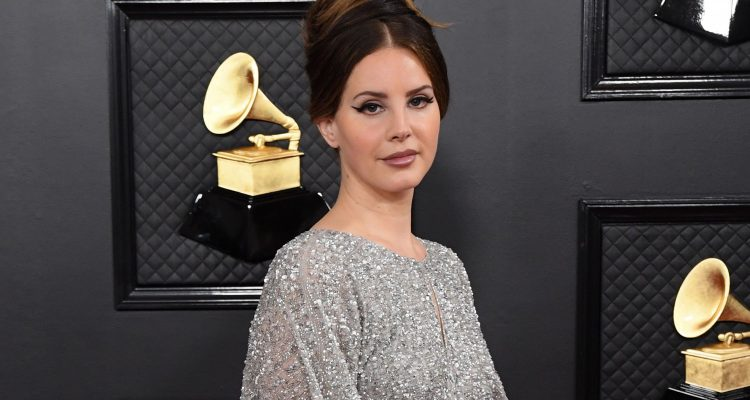 Lana Del Rey's $500 Grammys Dress Is From The Mall